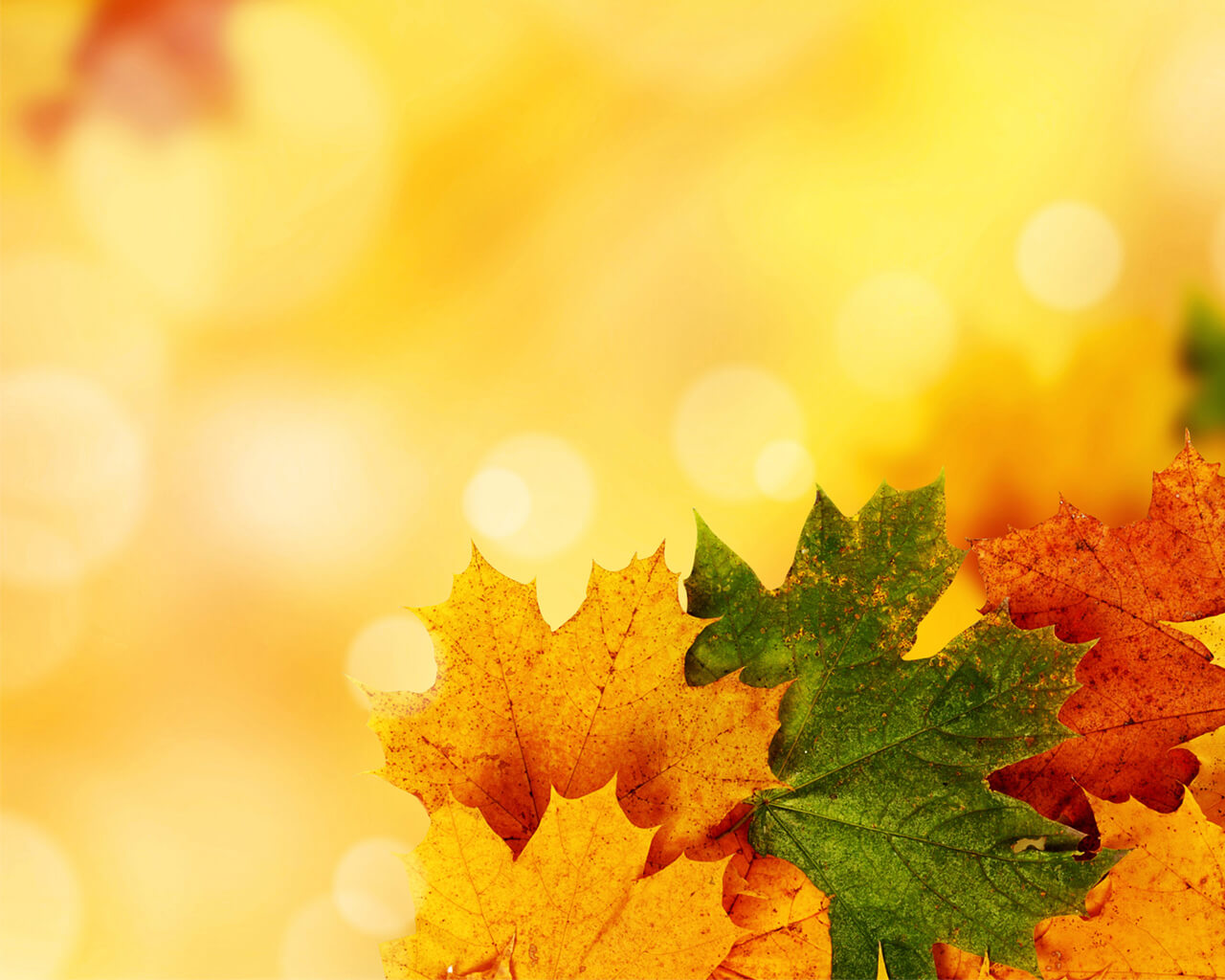 Yellow Autumn Backgrounds For Powerpoint - Nature Ppt Templates Intended For Free Fall Powerpoint Templates